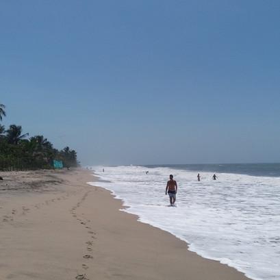 Palomino e a praia do mar bravo.