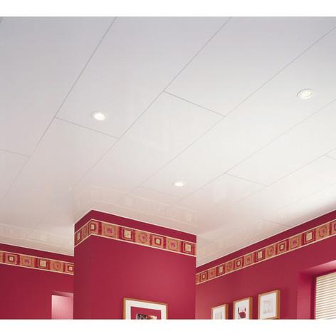 Plafond panelen