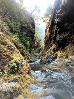 Rogue River side hike