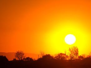 Début d'année le plus chaud en France