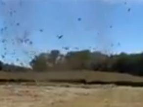 Impressionnant dust devil dans la Creuse