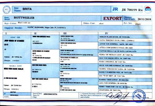 Brita Export.jpg