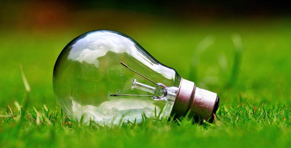 università_torino_sostenibilità.jpg