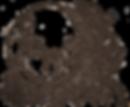 Luna Logo Transparent Background 2019_ed