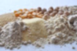 gluten free non gmo plant based ingredients