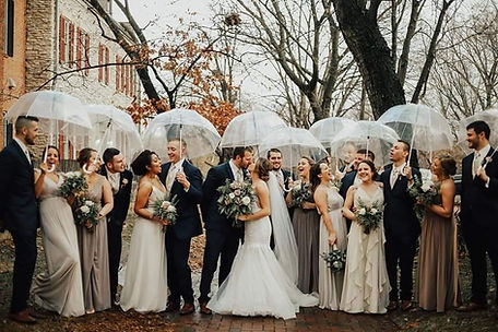 Rent Clear Umbrellas for Wedding Party