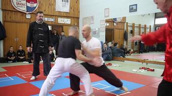 Wushu Croatia Open 2015