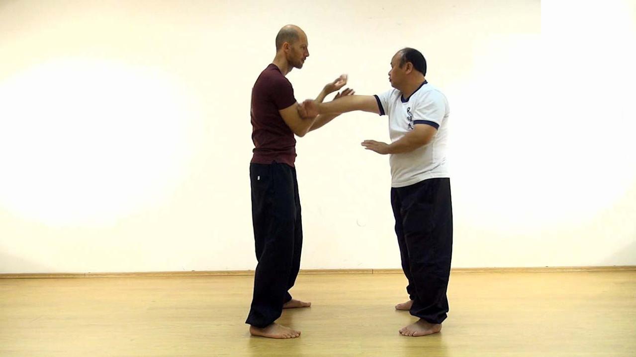 Wingchun drills #5 / Hand speed practice
