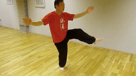 Kratka Yang Taijiquan forma 37