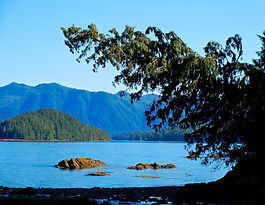 Ketchikan - Settler's Cove overlooking Tongass Narrows, Clover Pass