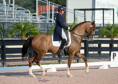 Cacharel competing in the Intermediate II. Owned by Andrea Woodner.