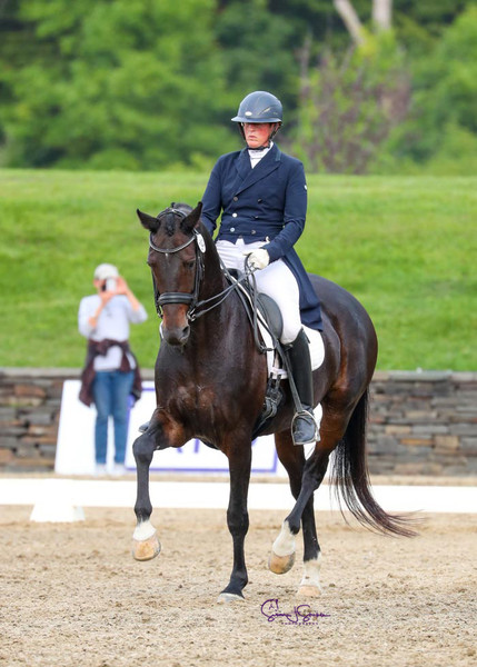 Citha's Utopia competing in the Grand Prix Freestyle. Owned by Andrea Woodner.