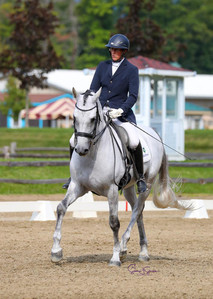 Hortelano LXXV competing Fourth Level. Owned by Andrea Woodner.