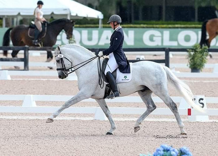 Andrea Woodner's QueBa HM, competing in the Grand Prix at the Adequan Global Dressage Festival.