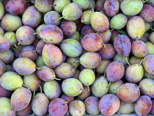 Sugar plums.jpeg