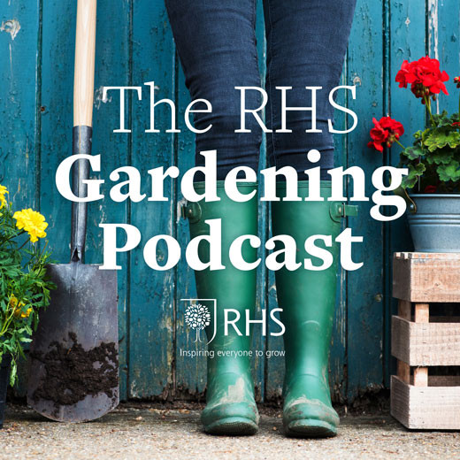RHS-Podcast-square-2018.jpg