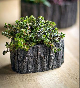Small Oval Bark Planter