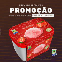 Sorvetes Natuice - PREMIUM PRODUCTS