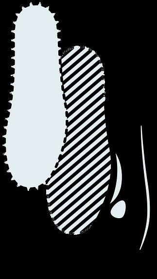 アートボード 78_4x.png