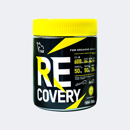 RECOVERY/リカバリー