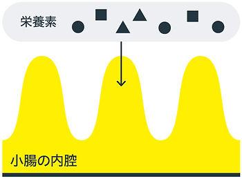 graph_03.jpg