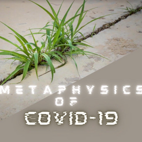 The Metaphysics of Covid-19