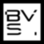 logo-bvs.png
