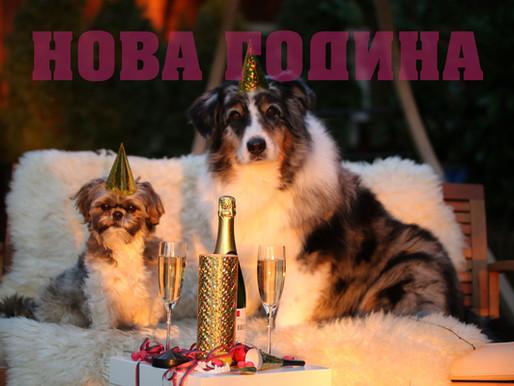 Доли се колебае къде да празнува Нова Година
