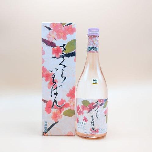 (有)山川酒造 さくらいちばん 5年古酒 25度 720ml
