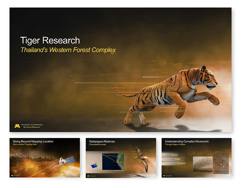 ppt-tigerresearch-9x11