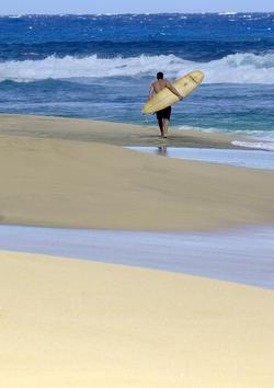 northshore_surfing1