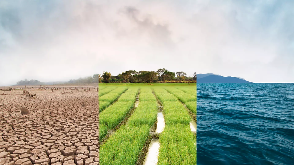Drought-struck land; Lush Agricultural land; Water in the Ocean.