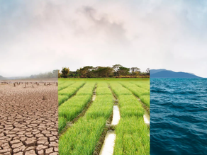 Climate Change, its Effect on Our Planet, and How to Mitigate It
