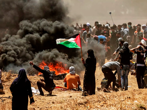 The Tale of Palestine and Israel: Timeline and How To Help
