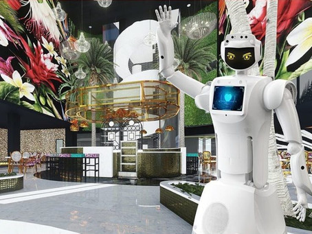 Robot Concierge Welcomes You At Sandton's Hotel Sky