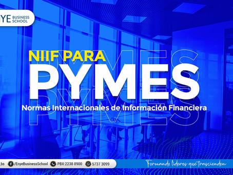 Normas Internacionales de Información Financiera (NIIF) para PyMEs