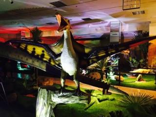 Pternodon - Wonder of Dinosaurs
