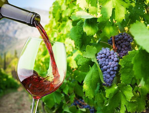 vino_italiano.jpg