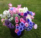 Screen Shot 2018-07-24 at 22.21.23.png