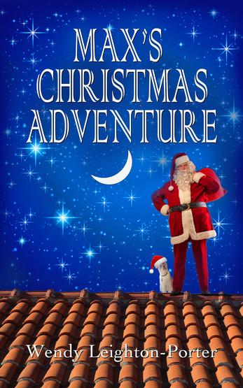 MAX's CHRISTMAS ADVENTURE_High res.jpg