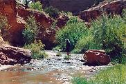 grandstaff canyon 3.jpg