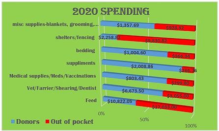2020 spending.jpg