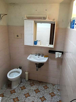 toilet with shower