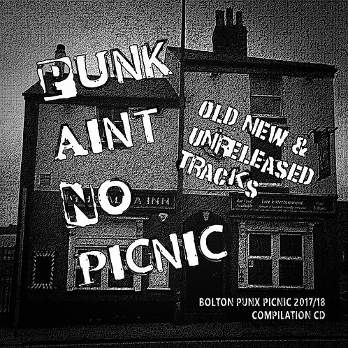 Punk Aint No Picnic VOL 1  comp CD+ Booklet