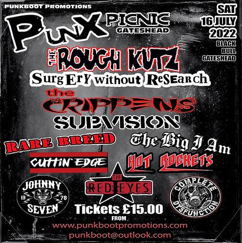PUNX PICNIC TICKET Gateshead Sat 16 July 2022