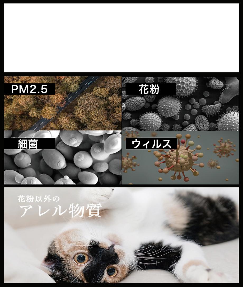 細菌.png