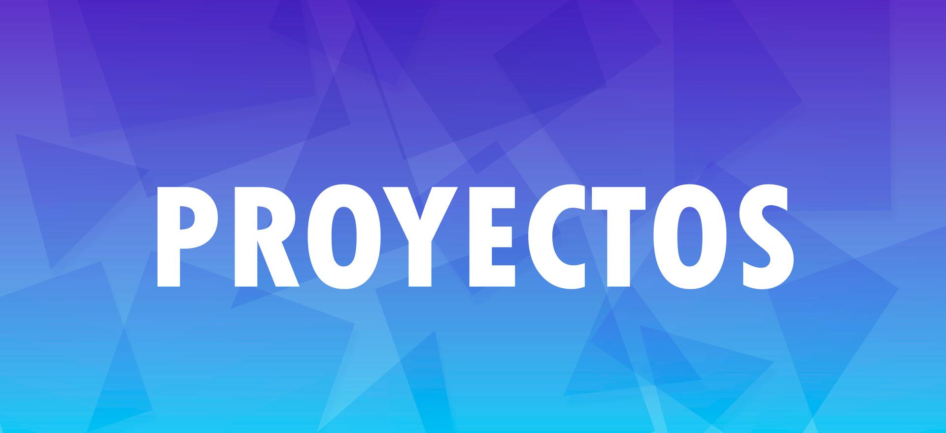 PROYECTOS-02.jpg