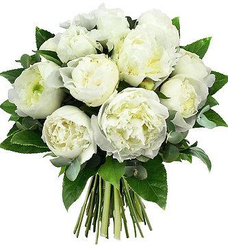 Bouquet de pivoine blanche
