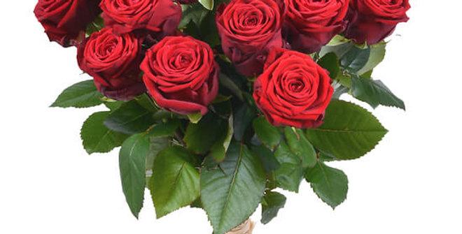 Déclaration 21 roses rouges
