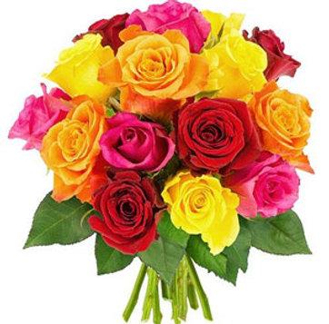 Emisphère sud bouquet de roses mix de couleurs